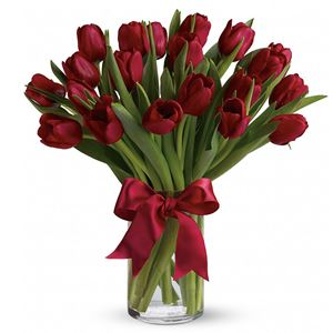 Image of 6962 Red Tulips from Rose of Sharon Florist