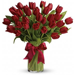 Image of 6963 Red Tulips from Rose of Sharon Florist