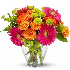 Hot pink gerberas, orange bi-color roses, orange spray roses and green button spray chrysanthemums are delivered in a charming glass vase.