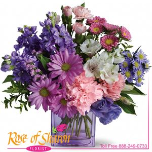Image of 6699 Heart's Delight  from Santa Maria Florist