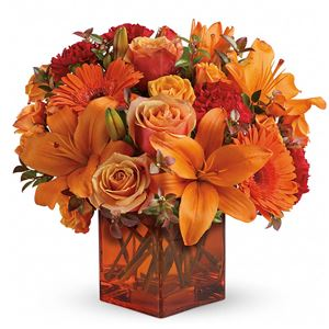 Image of 6827 Sunrise Sunset  from Santa Maria Florist