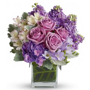 Image of 6380 Sweet as Sugar   from Your Local Master Florist