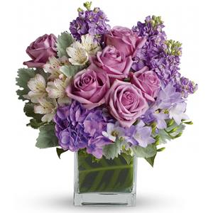 Image of 6381 Sweet as Sugar   from Your Local Master Florist