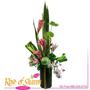 Image of 2110 Tropical Reflections from Santa Maria Florist