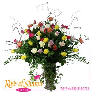 Image of 92233 Four Dozen Roses from Santa Maria Florist