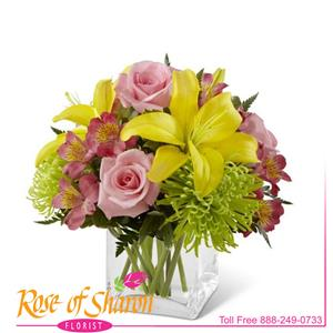 Breath of Spring is a cheerful collection of bright yellow Asiatic lily, soft pink roses, spider mums and rosy alstromeria in a clear glass cube vase.