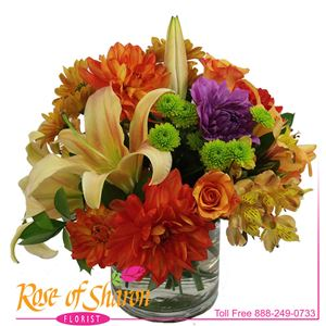 One of our most popular arrangement styles is Autumn ready. A lush collection of bright Fall blooms, closely arranged in a quality glass cylinder.