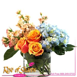 A glass cylinder for favorite premium blooms. Fragrant peach stock, Cherry Brandy Roses, blue Hydranges and pink spray roses.  Arranged to be enjoyed from one side.
