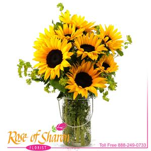 Image of 2363 Sunflower Joy from Santa Maria Flowers