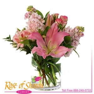 Image of 2369 Touch from Rose of Sharon Florist