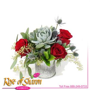 Image of 2476 Miki Succulent & Rose Bouquet from Your Local Master Florist