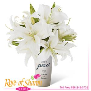 Image of 92537 Rosana in Leaf Cube from Rose of Sharon Florist