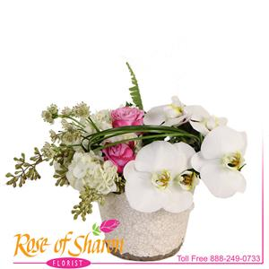 Image of 2552 Aiko Bouquet from Rose of Sharon Florist