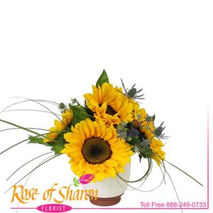 Image of 2592 Soraya Sunflower Bouquet from Rose of Sharon Florist