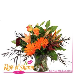 Saffron Vase Arrangement for Autumn is created with bright orange Gerbera, crimson dianthus, orange roses, peach lily and dark orange rose hips, chocolate feather eucalyptus and lush forrest greens in a sculpted keepsake vase.