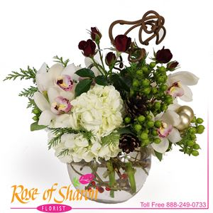 Image of 2689 Merry Winter Wishes from Rose of Sharon Florist