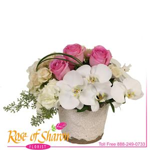 Image of 2792 Aiko Deluxe Bouquet from Santa Maria Flowers