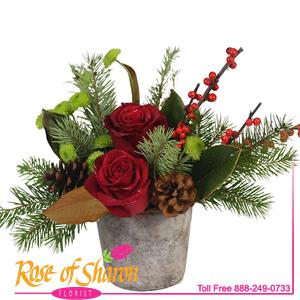 Image of 2860 Bryson from San Luis Obispo Flower Shop