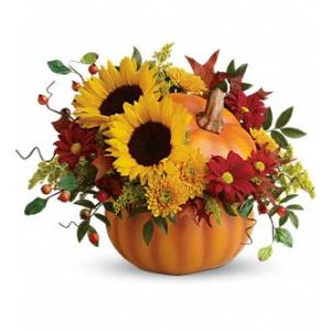 Thanksgiving Flowers from Rose of Sharon Florist