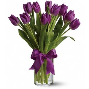 Tulip Bouquets from Rose of Sharon Florist