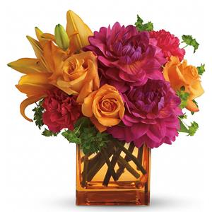 Cube Arrangements from Rose of Sharon Florist