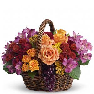 Image of 6480 Sending Joy  from Rose of Sharon Florist