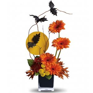 Halloween from Rose of Sharon Florist