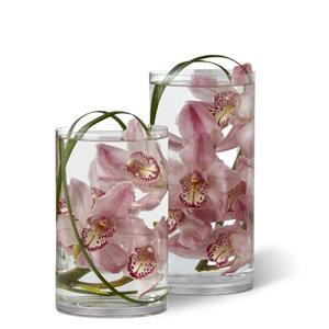 Tranquil Orchid Arrangement