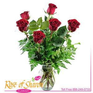 Six Premium Roses