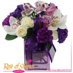 Image of 1985 Purple Fantasy from Rose of Sharon Florist
