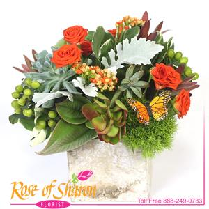 Image of 1992 Ariana Cube Arrangement from Rose of Sharon Florist