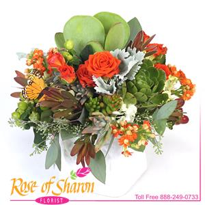 Image of 1994 Giana Cube Arrangement from Rose of Sharon Florist