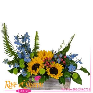 Image of 1996 Samuel Sunflower Arrangement from Rose of Sharon Florist