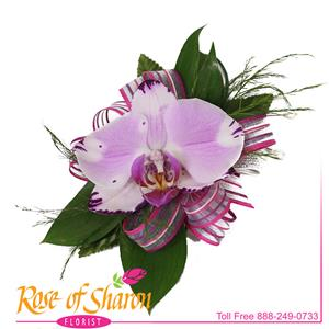 Great for Prom from Rose of Sharon Florist