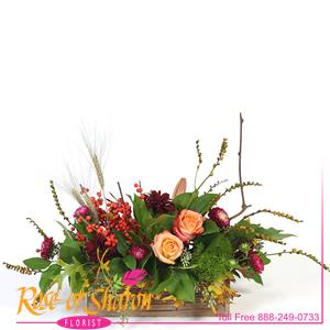 Grace is an organic table arrangement created in a stained wood planter. Apricot roses from Ecuador, orange Ilex stalks and montbresia pods arranged with lemon foliage, matsumoto aster, lily, wheat and mums.