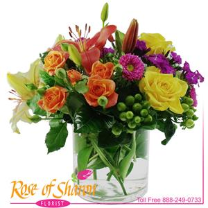 Image of 2062 Bright Days from Rose of Sharon Florist