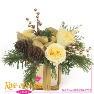 Belle is a delightful, seasonal arrangement of gold garden roses, cones and gold winterberry arranged as a small gift tied together with shimmery ribbon in a gold mirror glass cube.