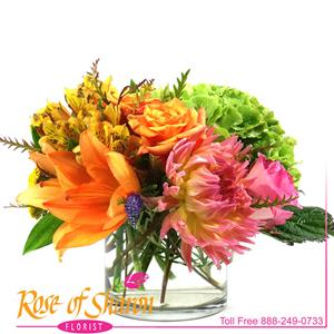 Image of 2111 Autumn's Treasures from Rose of Sharon Florist