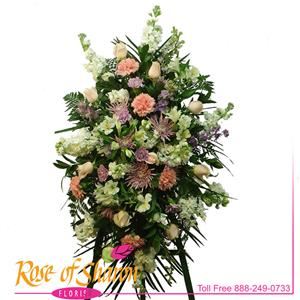 Pink Comfort Tribute