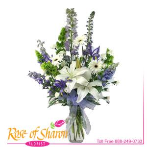 Image of 2244 Blue Velvet from Rose of Sharon Florist