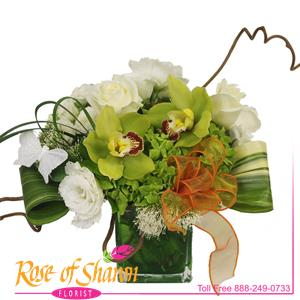 Image of 2256 Christina from Rose of Sharon Florist