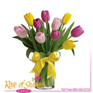 Image of 2269 Spring Tulip Vase from Rose of Sharon Florist