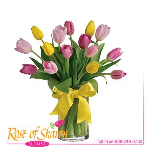 Image of 2270 Spring Tulip Vase from Rose of Sharon Florist