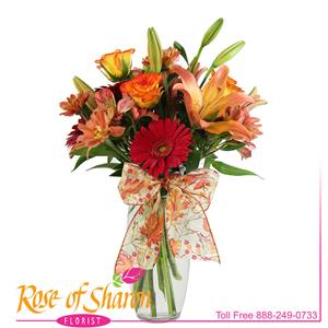 Image of 2294 Autumn Delight from Rose of Sharon Florist