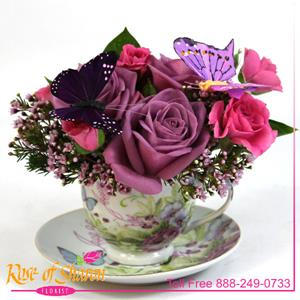 Image of 2348 Tea Time from Rose of Sharon Florist