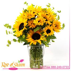 Image of 2364 Sunflower Joy from Rose of Sharon Florist