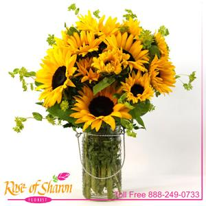 Image of 2365 Sunflower Joy from Rose of Sharon Florist
