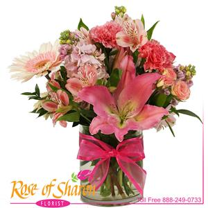 Image of 2370 Harmony from Rose of Sharon Florist