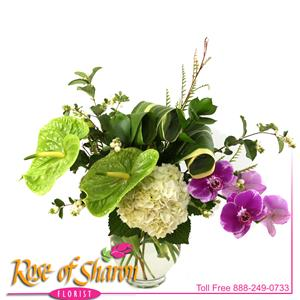 Signature Design from Rose of Sharon Florist