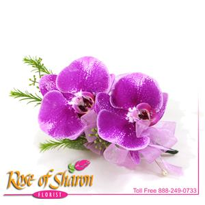 Corsages from Rose of Sharon Florist